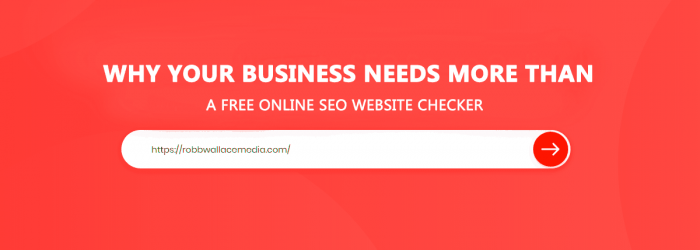 Is a free online SEO website checker enough?